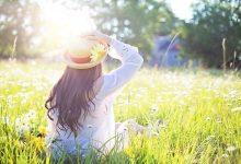 sunnyday-stz